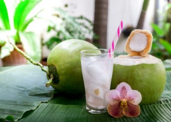 resep es kelapa muda